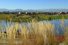 Anthem Community in Broomfield Colorado