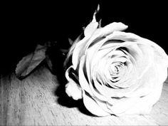 Romeo & Giulietta - N. Rota - DUO - (Organo & Violino) - YouTube