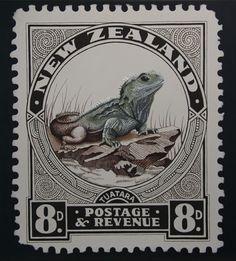 JANE CRISP. 1900s-Tuatara-Postage-Stamp.jpg