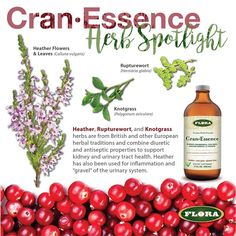 We're giving away a bottle of our new product Cran-Essence for #FreebieFriday! CranEssence is a full spectrum-blend of 9 herbs that promotes & maintains normal urinary tract health. Say cheers to a happy bladder!  To enter this giveaway LIKE our page and LIKE & COMMENT on this post on.  #giveaway #BeFloraHealthy #happybladders #cheers