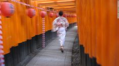 Kyoto | See | Fushimi Inari Taisha Shrine gates