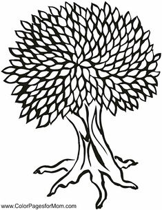 tree coloring page 25 colorpagesformom