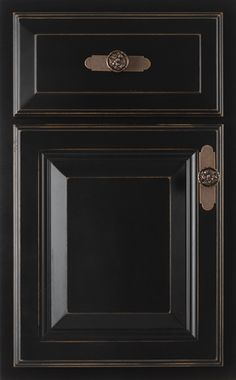 1000 images about cabinet styles on pinterest raised for Black cabinet with doors