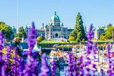 Victoria Tourism: TripAdvisor has 133,799 reviews of Victoria Hotels, Attractions, and Restaurants making it your best Victoria resource.