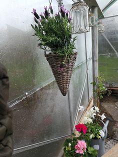 Hygge med lys og blomster