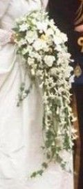 """Princess Diana's Wedding Bouquet  42' long And 15"""" wide. Made of Gardenias, Stephanotis, Freesia, Odontoglossum Orchid,  Lily of the Valley, Earl Mountbatten Roses, Hedera (Ivy), Tradescantia, Myrtle, Veronica (Hebe). It weighed somewhere between 2 to 3 kilos."""