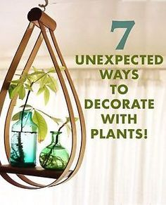 Aside from color and pattern, PLANTS play a very important role in my design philosophy. Plants add color and life to interior spaces and my Jungalow would not be complete without them. Though terra cotta...
