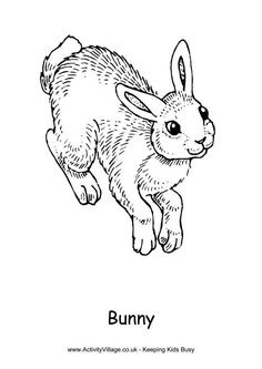 bunny colouring page 2