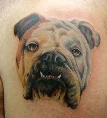 Pitbull Dog Head Tattoo On Chest