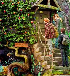 Keep off the dirigible plums. ~ Harry Potter and the Deathly Hallow