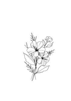 beautiful hand drawn florals