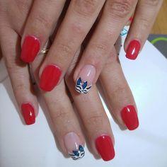 Rosso French bianco zebrato fiocco