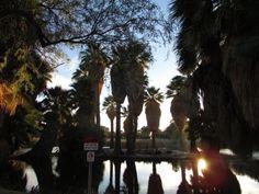 Historical Tour of Agua Caliente Park Tucson, Arizona  #Kids #Events