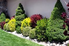 Landscaping with Shrubs and Bushes Photos and Design Ideas #LandscapeShrubs