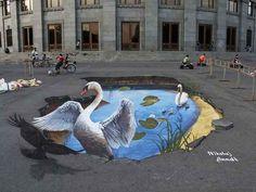 Um gracioso casal de cisnes nadando em um lago das redondezas.