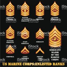 US Marine Corps Enlisted Ranks royalty-free us marine corps enlisted ranks stock vector art & more images of armed forces Usmc Ranks, Navy Ranks, Marine Corps Ranks, Military Ranks, Military Insignia, Military Training, Navy Military, Coast Guard Ranks, Once A Marine