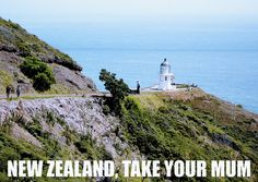 new zealand #flight of the conchords