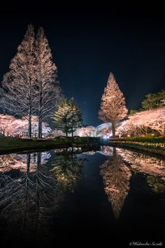 Night park by Hidenobu Suzuki on 500px