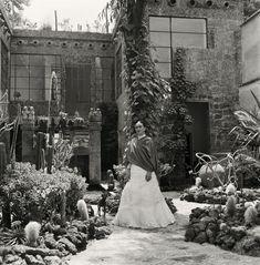 Frida Kahlo jardin