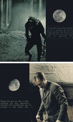 The sad truth about Lupin's lycanthropy and all he must endure while remaining such a kind and wise person