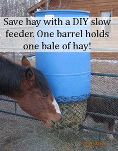 Plastic garbage can with the flip up handles to make filling hay bags. We use granite screenings in our stalls over which we put restaurant grade anti fatigue rubber mats that have holes in them. Hay Feeder For Horses, Horse Feeder, Horse Hay, Horse Love, Farm Hacks, Horse Shelter, Horse Tips, Horse Stalls, Barn Plans