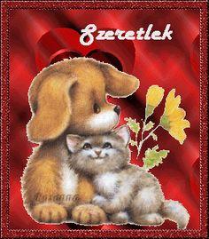 Messages Bonjour, Grinch, Rabbit, Teddy Bear, Love, Animals, Bunny, Amor, Rabbits