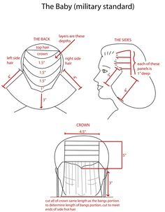cutting hair diagrams - Buscar con Google