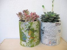 Flower Pot from Tin Cans - Create an indoor garden with this simple recycle craft idea. Get the kids to help!