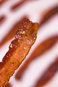 Oh my PORKING god, have you tried Candied Bacon? The only possible improvement to thick cut bacon-- a little brown sugar and black pepper. Make Brown Sugar, Brown Sugar Bacon, Oven Baked Bacon, Bacon In The Oven, Oven Recipes, Bacon Recipes, Candied Bacon Recipe, Best Bacon, Bacon Bacon