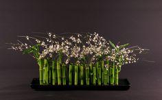 Koko Floral Design is a Guilford, Connecicut florist that creates custom elegant floral arrangements for CT weddings. Ikebana Arrangements, Church Flower Arrangements, Beautiful Flower Arrangements, Floral Arrangements, Beautiful Flowers, Wedding Arrangements, Daniel Ost, Corporate Flowers, Flora Design