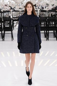 Christian Dior Fall 2014 Couture - Runway Photos - Vogue