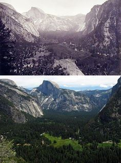 If you've hiked the Upper Yosemite Fall trail, you might recognize this view looking east. At first glance, the 1880s photo looks nearly identical to the recent view, but a close look shows that Yosemite Valley's meadows are disappearing. Any ideas why? Later today we'll comment with a couple reasons why Yosemite Valley now has more forest.