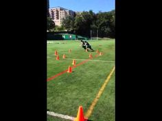 Include Non-Linear Sprinting and Agility Drills in Your Lacrosse Training   Lacrosse Training & Conditioning