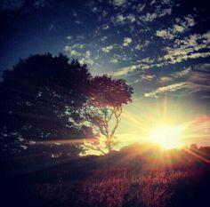 Sunset, sun, beautiful places