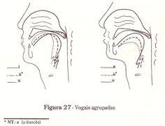 AULAS DE CANTO - Exercícios de Articulação das Vogais - Técnica Vocal.