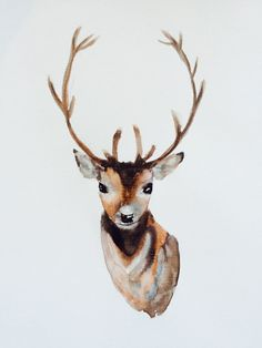 Young Buck by ShePaintsVirtue on Etsy