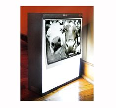 A Light box ...mostly for xrays...but repurposed for displaying photos or artwork. http://www.etsy.com/shop/RikkiVanCamp