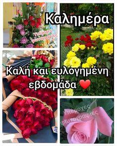 Anastasia, Cross Stitch, Beautiful, Decor, Punto De Cruz, Decoration, Seed Stitch, Cross Stitches, Decorating