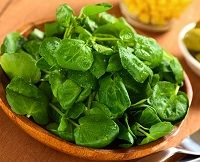 Watercress, Daikon, and Avocado Salad with Mustard Seed Dressing Recipe Watercress Recipes, Watercress Salad, Most Nutrient Dense Foods, Vegetarian Recipes, Healthy Recipes, Bariatric Recipes, Healthy Foods, Superfood Salad, Low Carb Vegetables