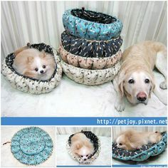 DIY Cute Pumpkin Bed for Dogs