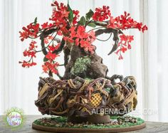 This is my cake. I was inspired by the beautiful Japanese Quince, a native tree from the Japanese Garden that has been cultivated into a Bonsai, The red flowers are so vibrant and contrast beautifully against the rustic bark of the tree. Gardens Of The World, Garden Cakes, Tree Cakes, Miniature Trees, Mini Plants, Bonsai Garden, Floral Cake, Beautiful Cakes, Amazing Cakes