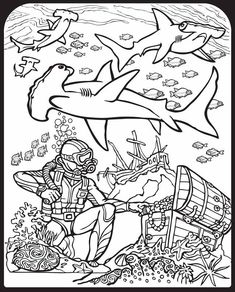 Printable Shark Coloring Pages Fresh Sharks Stained Glass Coloring Book Dover Publications Stained Glass Coloring Shark Coloring Pages, Coloring Book Pages, Printable Coloring Pages, Coloring Pages For Kids, Coloring Sheets, Dinosaur Coloring, Shark Drawing, Species Of Sharks, Hammerhead Shark