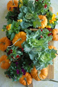 I started planning and prepping for our big Thanksgiving Dinner today! This year will mark my year hosting Thanksgiving . Hosting Thanksgiving, Thanksgiving Table, Fall Home Decor, Autumn Home, Shabby Chic Pumpkins, Autumn Decorating, Decorating Ideas, Fall Table, Autumn Garden