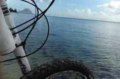 Beach bike, Cruiser bike Lefty Mountain Bike Mountain biking  Bike adventures
