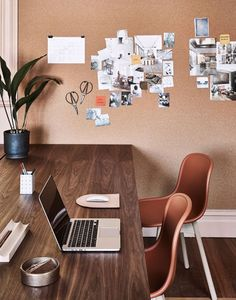 Take a tour of We Are Triibe's contemporary and design-focused Surry Hill's workspace.