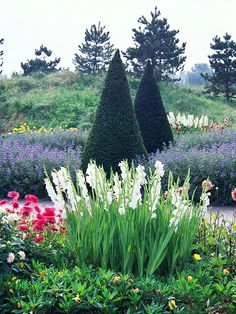 Evergreens offer an interesting focal point in a beautiful flowerbed.