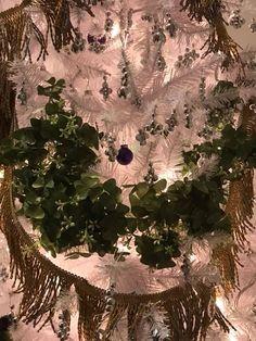 Coronation tree