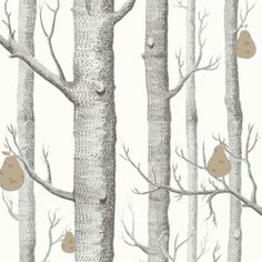 Woods & Pears 95-5029 Contemporary Restyled Cole & Son - Tapeter-tyger.se