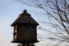 My birdhouse......