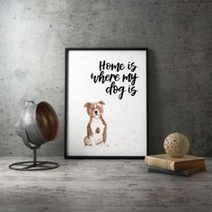 Home Is Where My Dog Is Staffordshire Bull Terrier Print Staffordshire Bull Terrier, Watercolor Print, Dog Breeds, Things To Think About, Vibrant, Colours, Display, Lettering, Pop